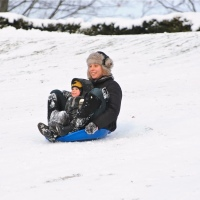 Sledging in High Park