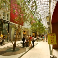 Trees Alley in Toronto Eaton's Centre