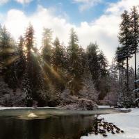 Первый снег в Центральном Парке Барнаби