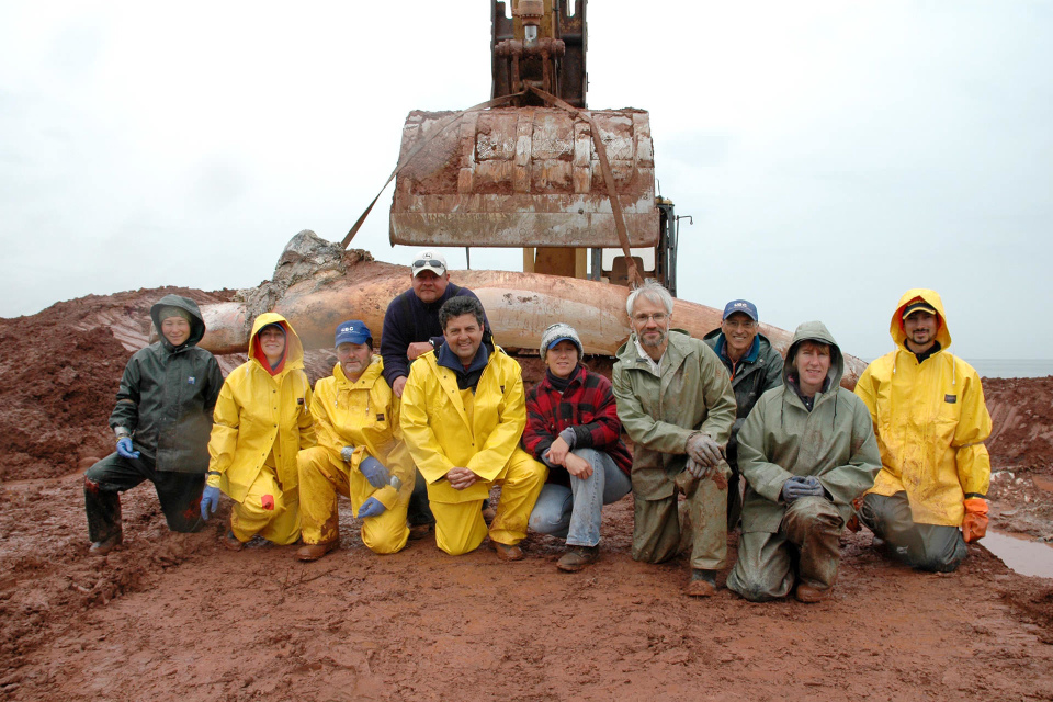 PEI Blue Whale recover team