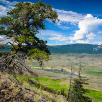 Ранчо — это та же ферма, где вместо того чтобы вспахивать поле, на него просто выпускают лошадей пастись. Долина реки Томпсона