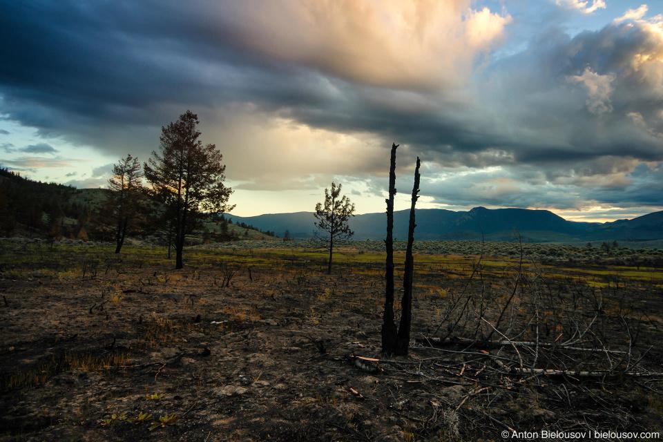 Сожженная земля в прериях Эшкрофта (Ashcroft, BC)
