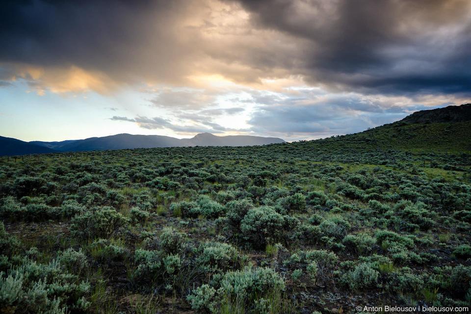 Пейзаж канадской прерии на закате (Ashcroft. BC)