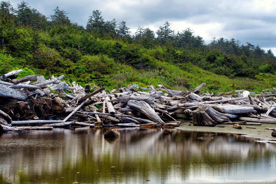 Combers beach debris at Pacific Rim National Park (Vancouver Island) © Anton Bielousov, 2013