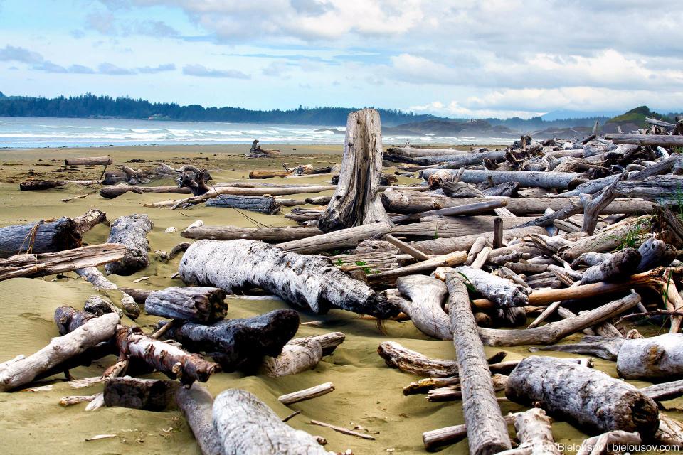 Пляж Combers Beach в Pacific Rim National Park (Vancouver Island)