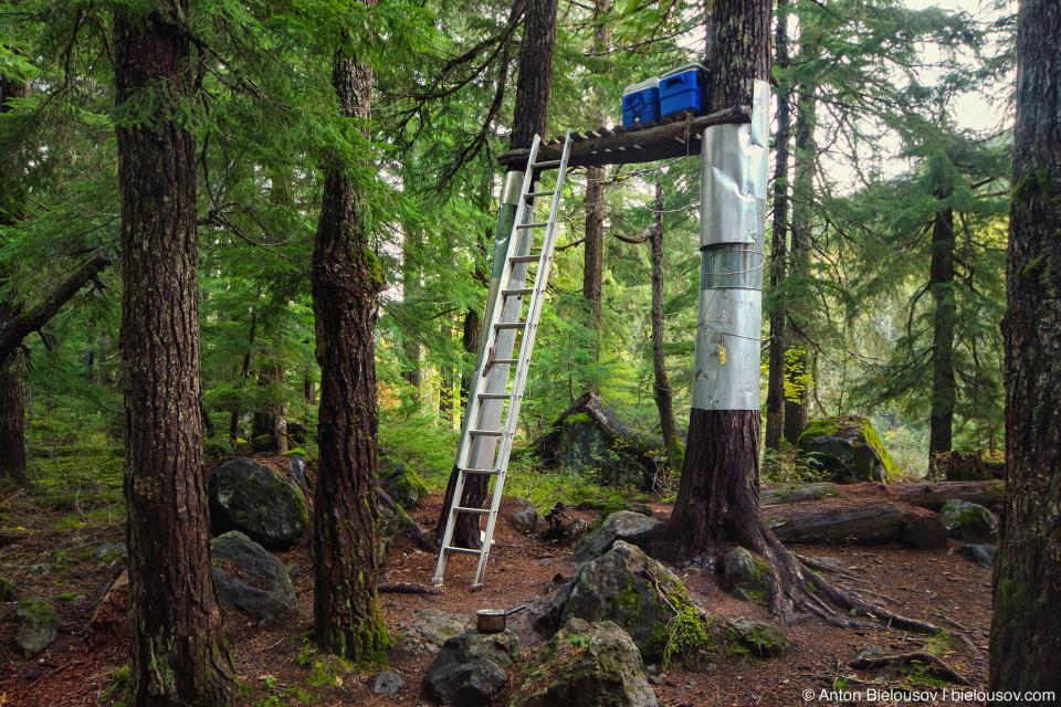 Keyhole Falls Campsite Bear Cache
