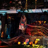 Проезжая частным сектором на велосипеде домой, мне в любом районе города встречались десятки детей в костюмах, а, наконец, доехав — попался самый украшенный дом, который я когда-либо видел на Хэллоуин.