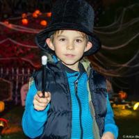 По результатам соцопроса в США в 2005 году 80% взрослых и 93% детей отмечают Хэллоуин.