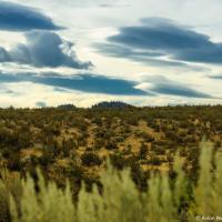 Пустыня носит индейское название, перед переводом которого у меня опускаются руки — Nk'mip Desert. По названию одноименного племени, которому сейчас и пренадлежит большая часть этой земли.