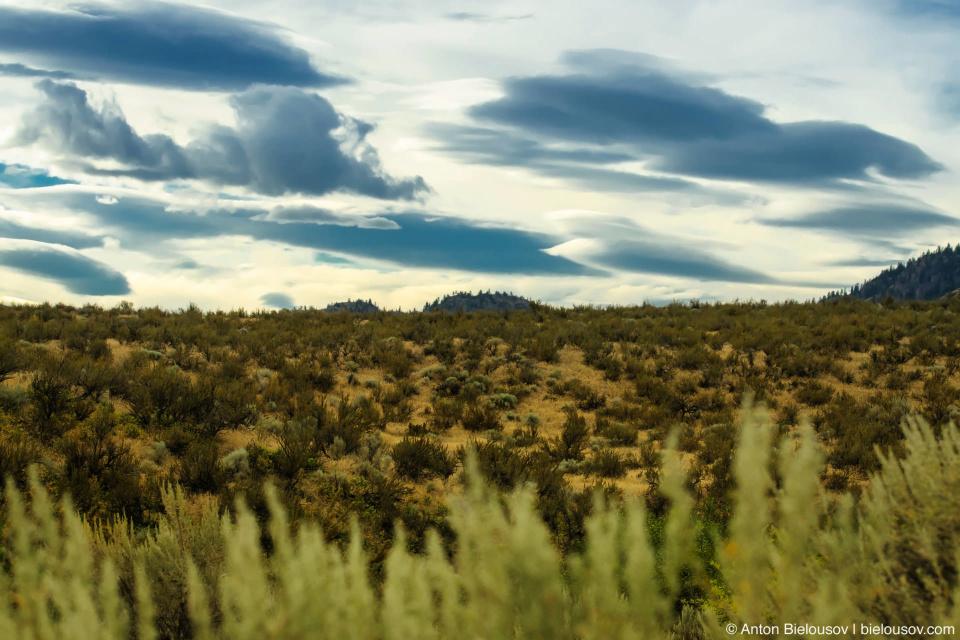 Nk'mip Desert — Osoyoos, BC