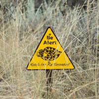 Как и в степях под Эшкрофтом (Ashcroft, BC) здесь кишмя кишат гремучие змеи. Мне снова попалось аж ни одной.