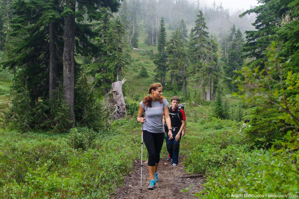 Trail to Elfin Lakes