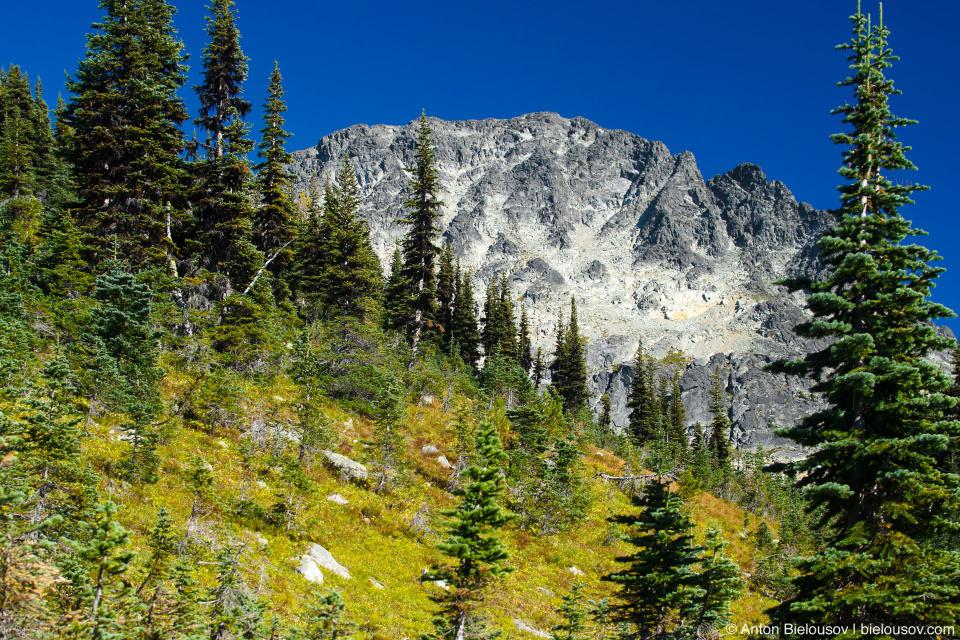 Blackcomb Mountain Peak (2,436m)