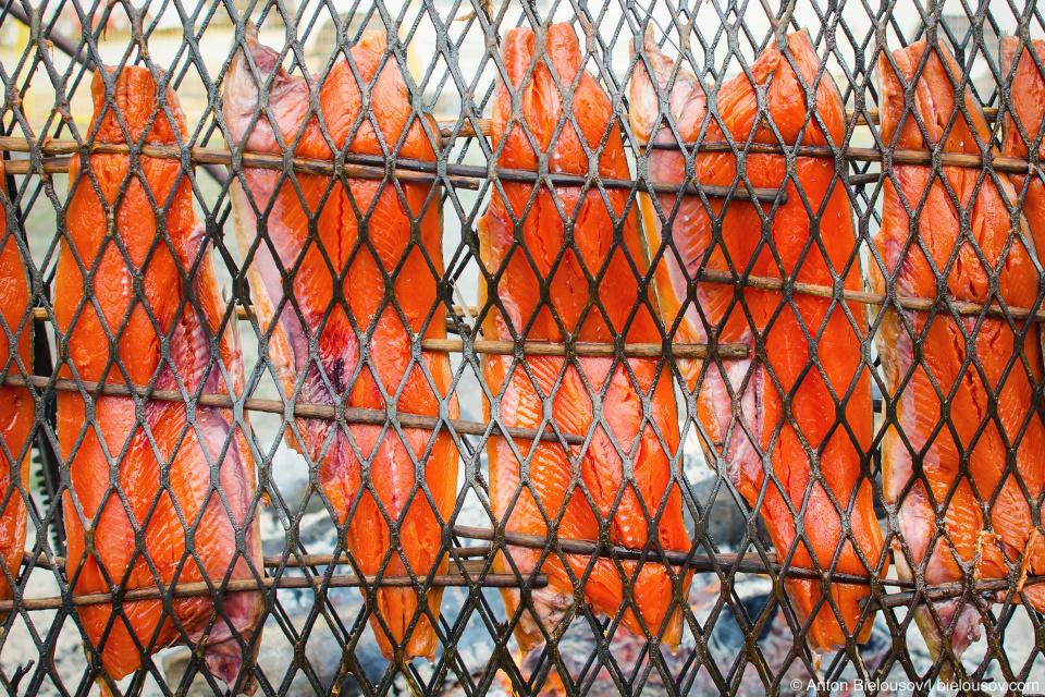 Так лосось жарится на гриле индейским методом