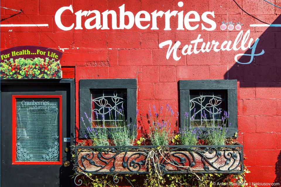 Некоторые города Британкой Колумбии отмечают урожай клюквы как, например, Форт Лэнгли где каждый год в выходные Дня Благодарения проходит жрачный фестиваль клюквы.
