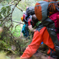 Тут невольно приходится вспомнить как непрост был путь к лагерю с основной тропы вчера потому что назад нужно точно также лезть через поваленные деревья.