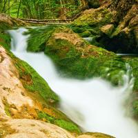 Горная река в Большом каньоне в Крыму
