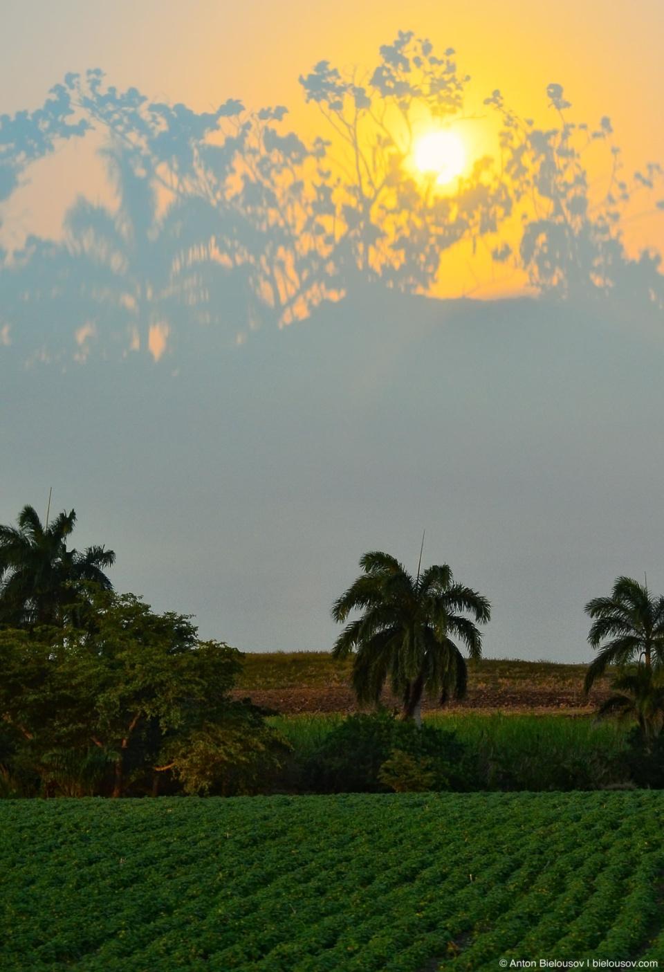Закат, отразившийся в автобусном окне, за которым — типичный кубинский пейзаж
