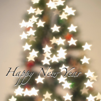 New Year Tree with stars shape bokeh