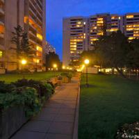 360 Ridelle Ave Toronto yard