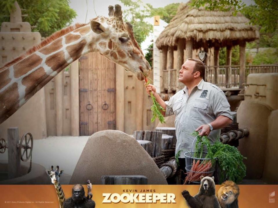 Kevin James Picture In Zookeeper Movie 2011 And Giraffe