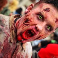 Zombie Walk 2011 Photo