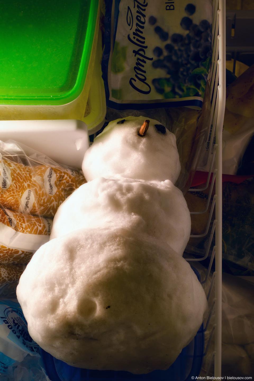 Snowman in freezer