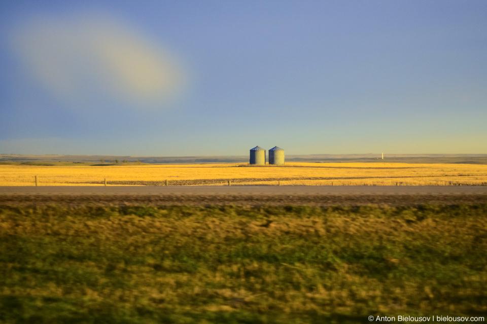 Степь Альберты