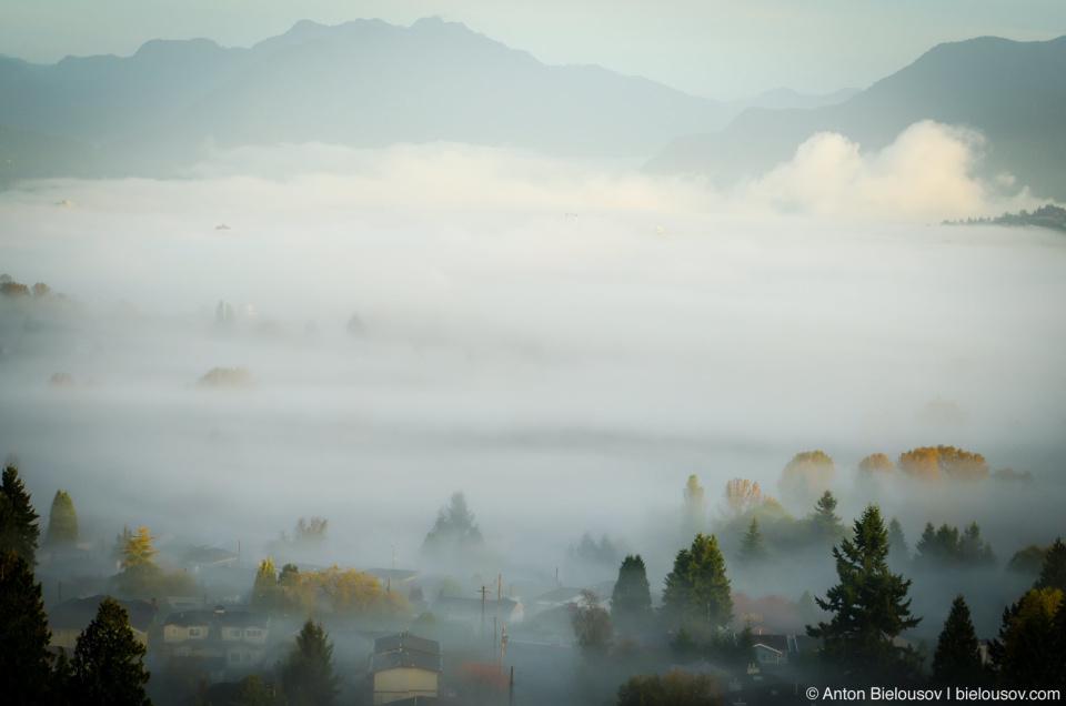 Туманное утро в Ванкувере