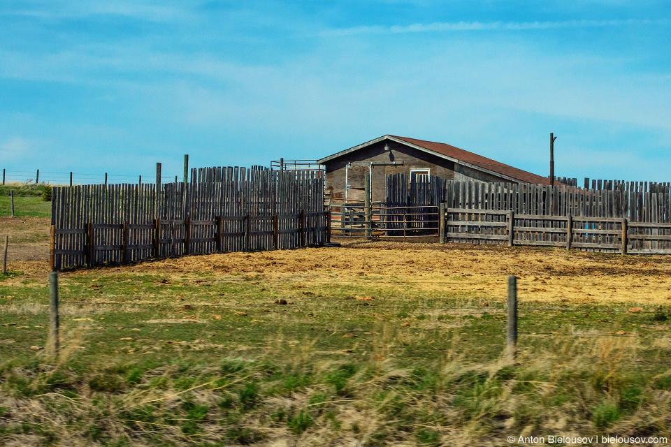Саскачеван: Степь да степь кругом, и полузаброшенные фермы вдоль дороги.
