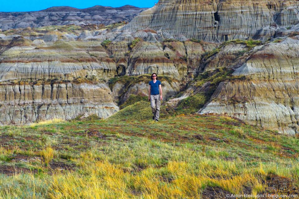 Альберта: Долина динозавров