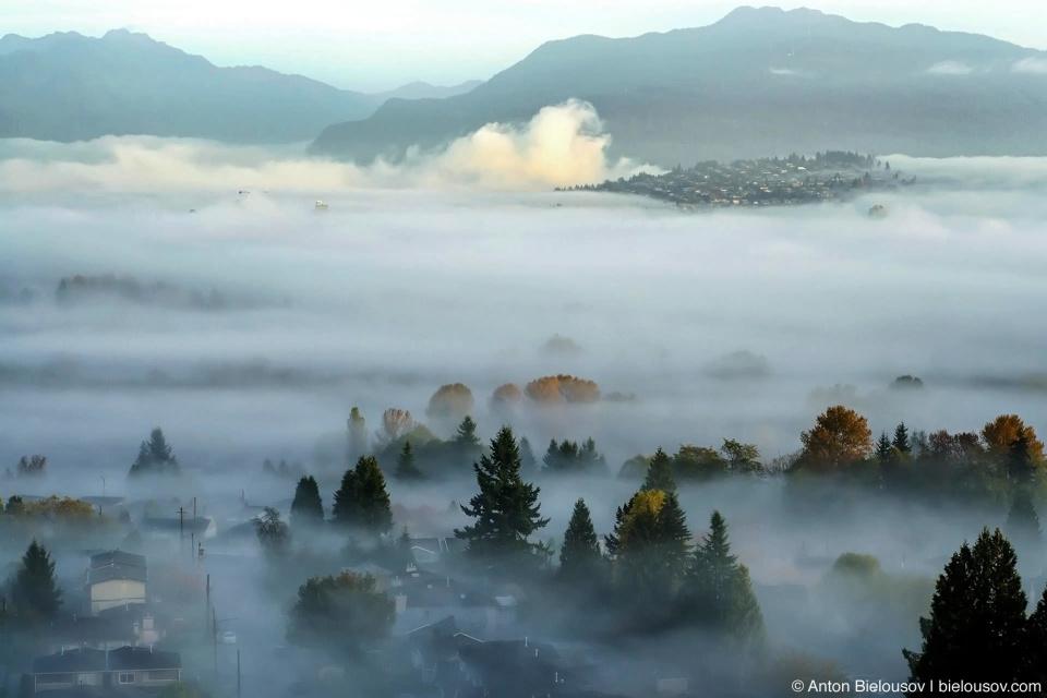 Утренний туман над Burnaby, BC