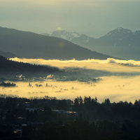 Vancouver morning fog from my apartment in Burnaby, BC