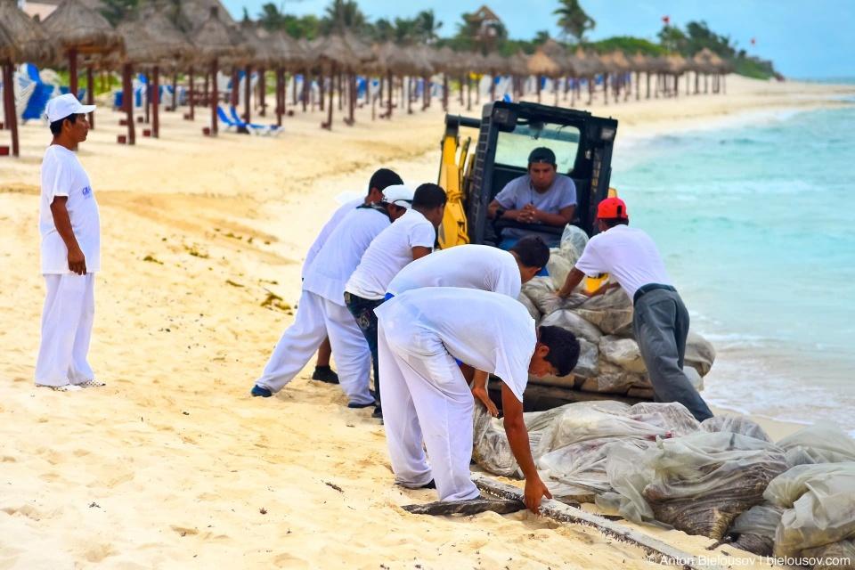Чистка пляжей в Мексике (Канкун)