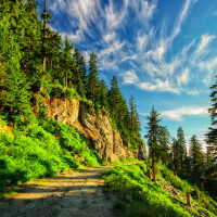 Grouse Mountain Alpine (goat mountain) trail