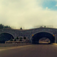 Wildlife overpass in Banff National Park, Canada