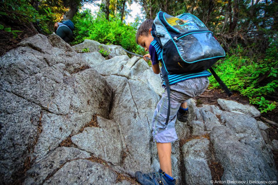 Цепи на трейле с Grouse Mountain на Goat Mountain (Vancouver, Canada)