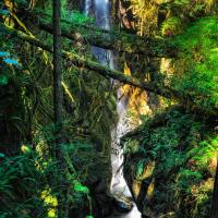 Кипарисовый Водопад (Cypress Falls)