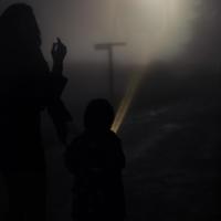Встреча в тумане
