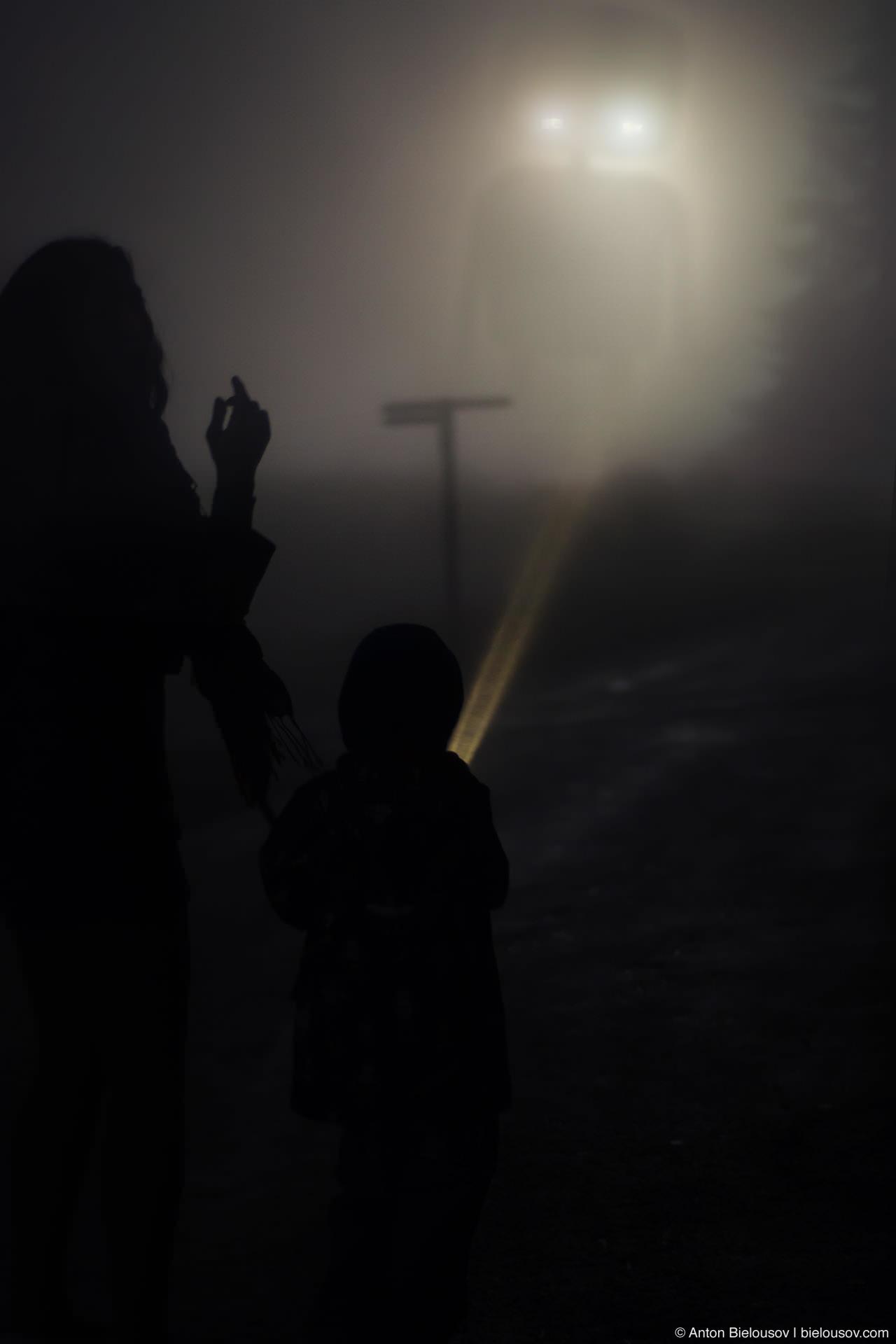 Робот в тумане