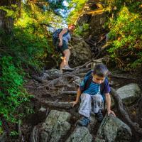 Корни и камни на трейле с Grouse на Goat Mountain