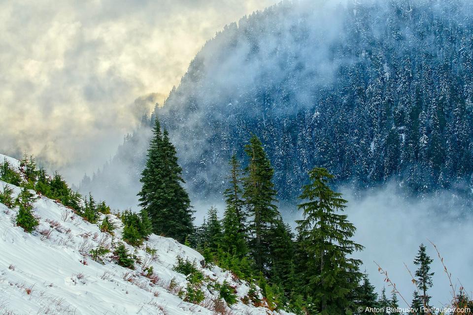 Зима на горе Grouse Mountain (Ванкувер, Канада)