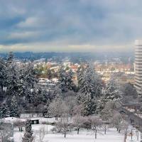 Вид на заснеженный Ванкувер из нашей квартиры в Барнаби