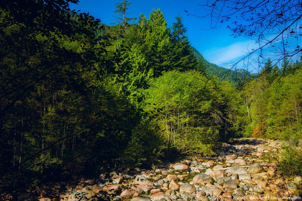 Река в долине Lynn Valley