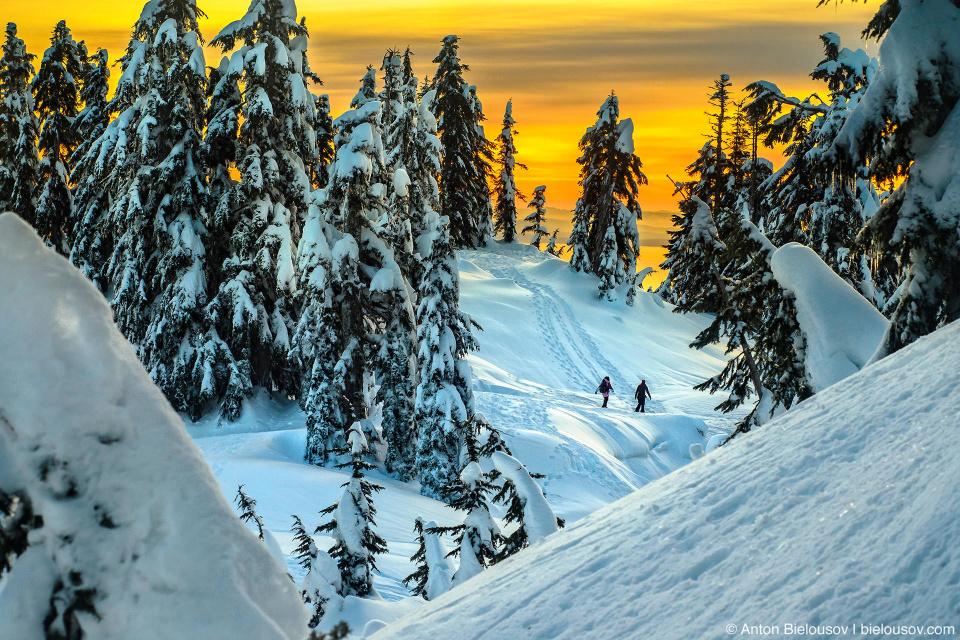 Снежный трейл на вершине горы Grouse Mountain в Ванкувере