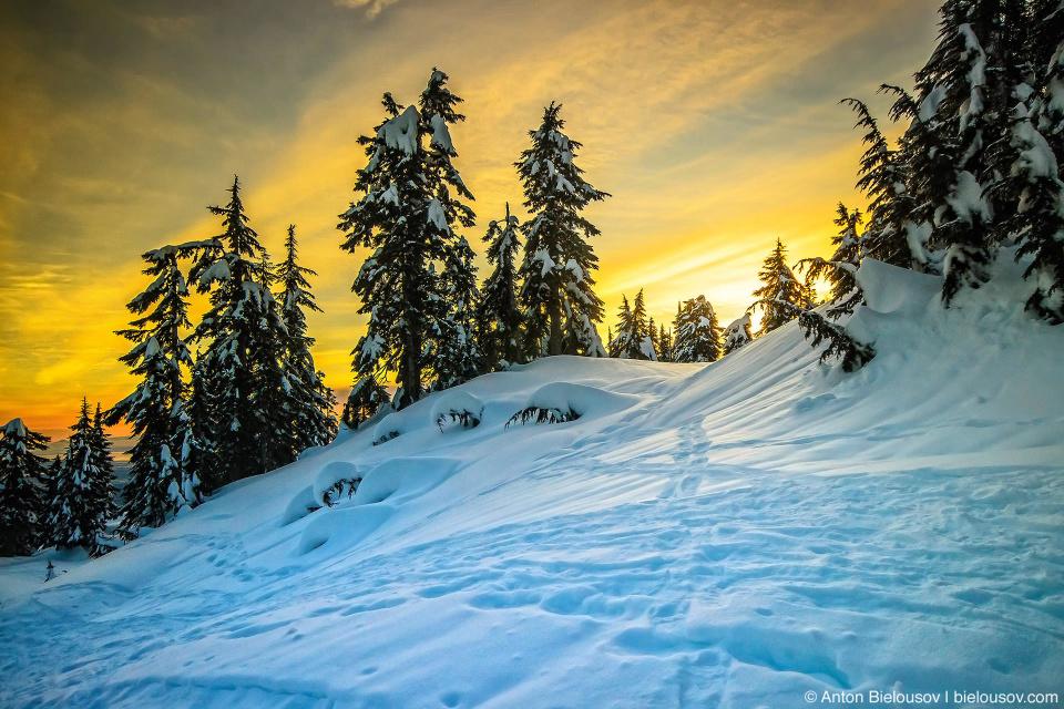 Заснеженный трейл для снегоступов на вершине горы Grouse Mountain