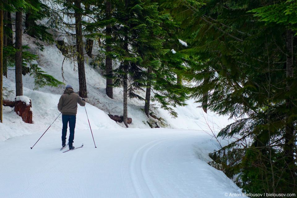 Лыжный трейл вокруг Потерянного Озера (Lost Lake, Whistler BC) и… Игорь