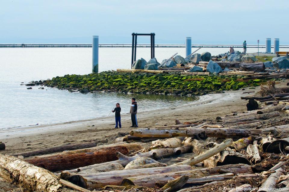 Одна из особенностей любого побережья Ванкувера — это множество бревен, унесенных от миллионов кубометров спалвляемого по здешним рекам леса. По ним можно легко узнать город в снятых здесь фильмах и я про них пока помалкиваю, чтобы отснять красиво лесосплав и написать об этом в отдельном посте.