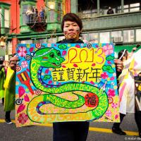 Это тот самый год, который черной змеи, зеленой лошади,  синей овцы или любого другого из 12-ти цветных животных
