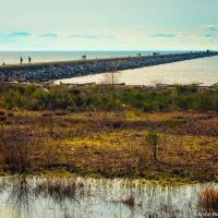 Iona Jetty — коса в море длиной в 4 километра